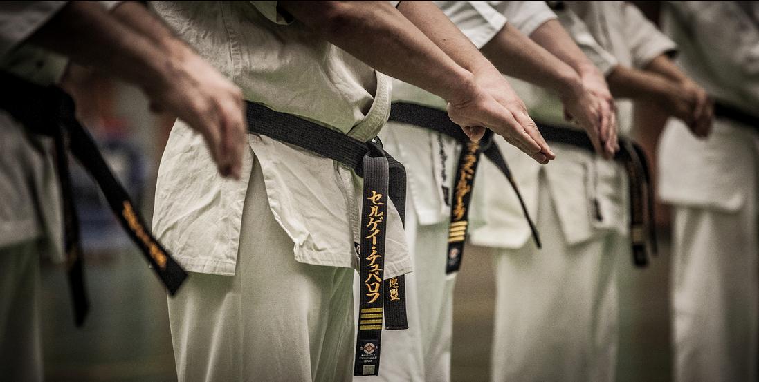 Karate Shinkyokushin