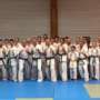 Stage / Formation combat shinkyokushinkai  28-29 Septembre 2019